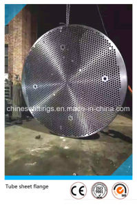 ASME Forged Stainless Steel Tube Sheet Flange pictures & photos