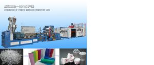 Automatic Plastic Sheet Extruder & Thermoforming Machine Production Line pictures & photos