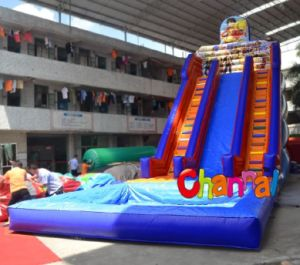 Inflatable One Piece Giant Water Slide pictures & photos