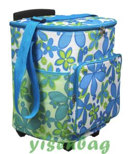 Tolley Cooler Bag, Picnic Bag (YSTB00-001) pictures & photos