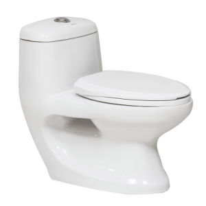 Hotel Bathroom Project One Piece Ceramic Toilet (CB-9057)