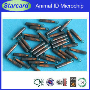 Animal Tracking RFID Glass Tube Tag (Starcard-032) pictures & photos