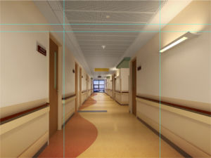 Hospital Wall Protector pictures & photos