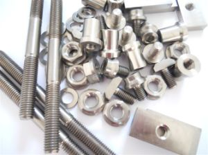 High Quality Pure Titanium Screw No. 1 pictures & photos
