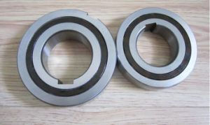 Csk Csk-P Csk-PP Series Hot Sale SKF Cam Clutch Bearing pictures & photos