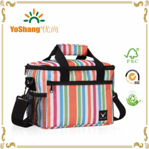 Thermal Cooler Bag Lunch Box Stirpe Insulted Zipper Outdoor with Shoulder Strap pictures & photos