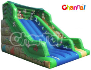 2016 New Arrival Inflatable Slide/Titanic Dry Slide (Bb057) pictures & photos