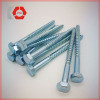 Hexagon Self Tapping Screw DIN7976 pictures & photos