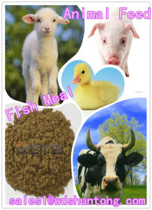 Fish Meal with High Protein for Animal Feed Hot Sale pictures & photos
