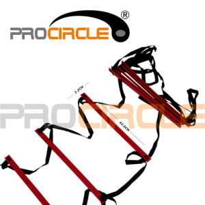 Sports Training Equipment Speed Agility Ladder with Carry Bag (PC-AQ2012-2014) pictures & photos