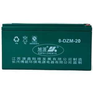 12V/24V/36V/48V Rechargeable Lead Acid Auto Battery (6-DZM-20)