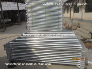 Galvanized 40mmx80mm Oval Tube Cattle Panel Fence pictures & photos