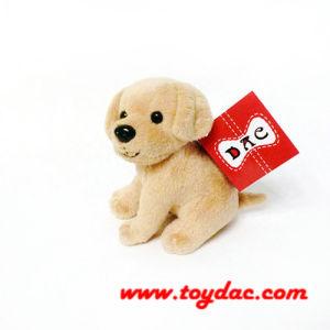 Plush Soft Mini Dogs pictures & photos