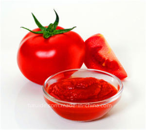 China Tomato Paste Good Price Cold Break