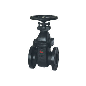 Cast Iron Non-Rising Stem JIS10k Gate Valve with Hand Wheel
