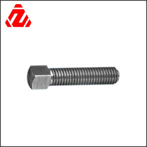 Customizable Stainless Steel Shaped Square Head Bolt pictures & photos