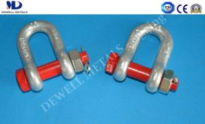 Hot Dipped Galv. G210 U. S. Type Drop Forged Dee Shackle pictures & photos