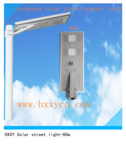 Pure White Solar Lamp Garden Light Energy Saving Power Mode Solar LED Street Light pictures & photos