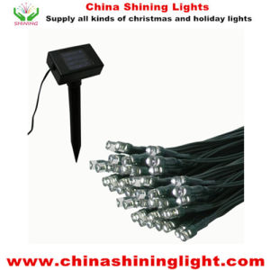Solar Panel Power Green Wire Waterproof IP44 LED Lights pictures & photos
