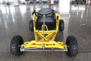 196cc Mini Gas Go Kart Single Seat pictures & photos