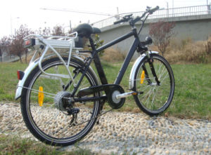 Hot Sell Very Cheap 36V 250W Electric Bike for Sale pictures & photos