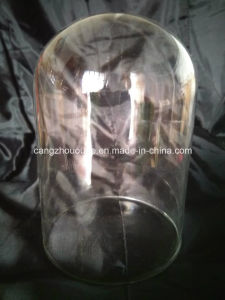Glass Cover Vase pictures & photos
