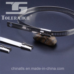 China Supply Ladder Type Stainless Steel Cable Ties pictures & photos