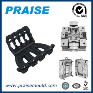 Professional Manufacturer Auto Intake Manifold Die Mould pictures & photos