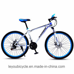 Professional Manufacture Wholesale Carbon Mountain Cycle (ly-a-79) pictures & photos