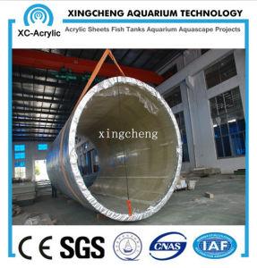 Cylindrical Acrylic Aquarium / Large Transparent Cylindrical Acrylic Aquarium by Customized for Acrylic Aquarium Project pictures & photos