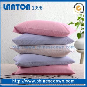 China Factory Wholesale Goose/Duck Feathers Down Fill Pillow/ Cushion for Hotel pictures & photos