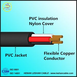 Hot Selling Tsj PVC Insulated Nylon Sheath Electric Wire / Cable pictures & photos