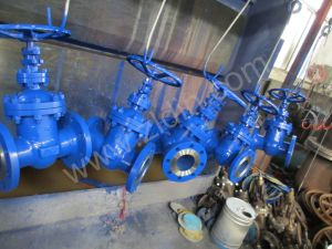 DIN Standard Cast Steel Wcb Pn16 Z45h Non-Rising Stem Gate Valve for Petrochemical pictures & photos