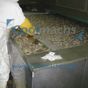 High Quality Bread Seafood Ice Cream Tunnel Quick Freezing pictures & photos