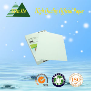 Colorful Anti-Static Copy Paper A4 Size and Any Size OEM Color Paper