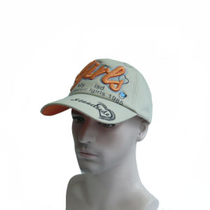3D Embroidered Baseball Cap Trucker Cap pictures & photos