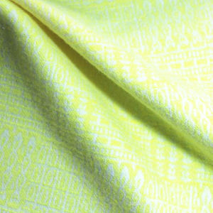 Good Quaality Beautifal Popular Spandex Jacquard Fabric pictures & photos