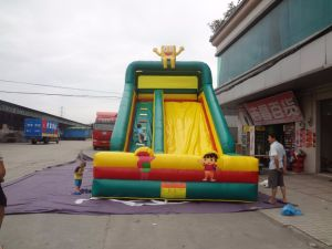 Commercial Rainforest Big Inflatable Water Slide with Pool pictures & photos