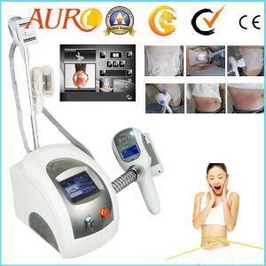 Best Cryolipolysis Cool Shaping Machine pictures & photos