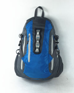 Professional Good Quality Travel Sport Backpack in Different Colors pictures & photos