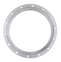 High Quality Factory Price Stainless Steel Big Diameter Forged Flange