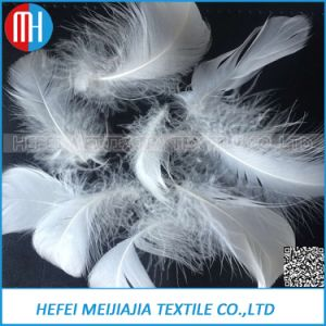 2-4cm Washed White Goose Feather for Sofa and Pillow Filling pictures & photos