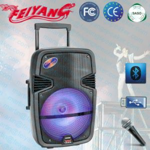 Feiyang/Temeisheng Portable 12inch Bluetooth Speaker with Trolly and Light F-22m pictures & photos