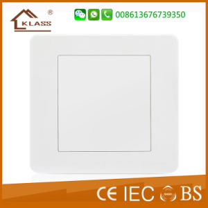 White Color High Quality Electric 1 Gang Blank Plate pictures & photos