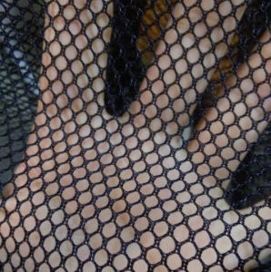 Net Fabric pictures & photos