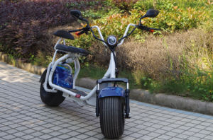 Jinyi 800/1000W Motor Harley Scooter for Cheaper Selling (JY-ES005) pictures & photos