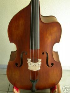 Double Bass pictures & photos