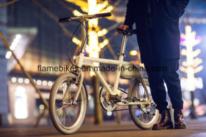 250W Electric Bike with Assitant Power pictures & photos