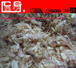 Dehydrated Garlic/Onion/Mushroom Vegetable Food Drying Mesh Belt Dryer Machine pictures & photos