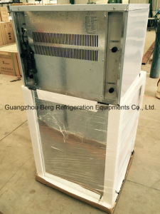 1000kgs Stainless Steel 304 Material Cube Ice Maker pictures & photos